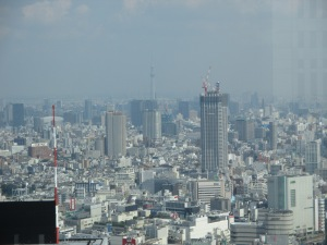 The views out of the observation floor of the Metropolitan Government Building